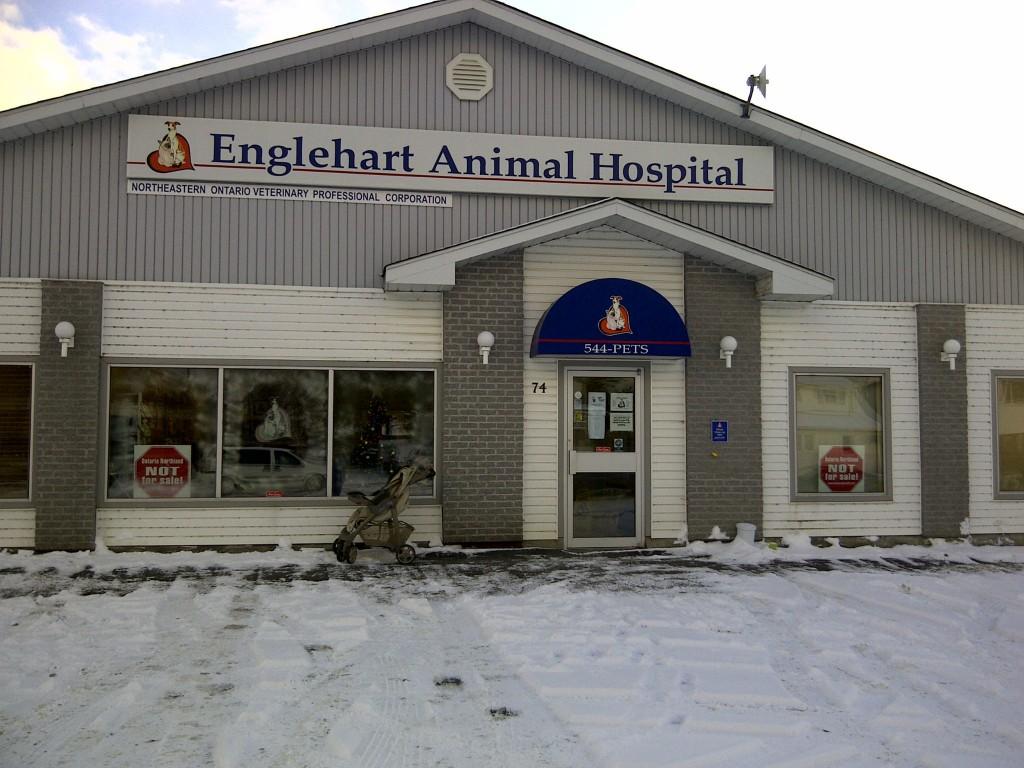 englehartanimalhospital in Englehart, ON